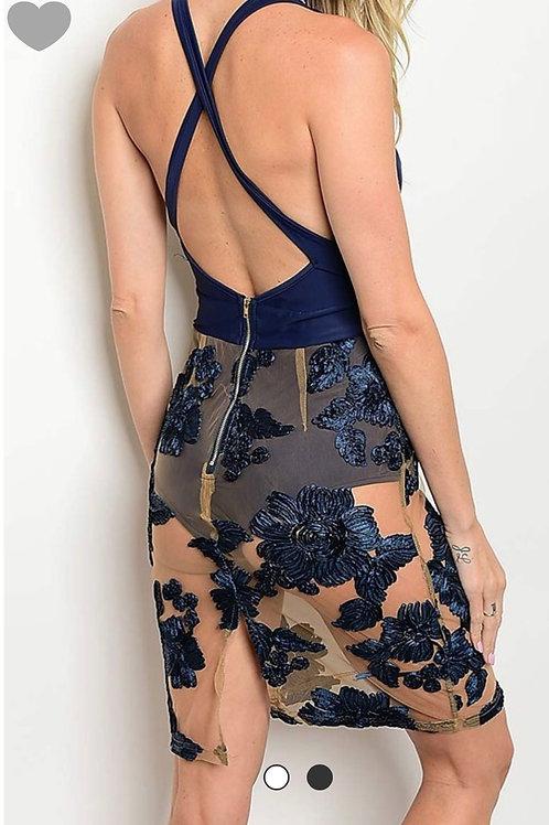 Blue/Nude Dress