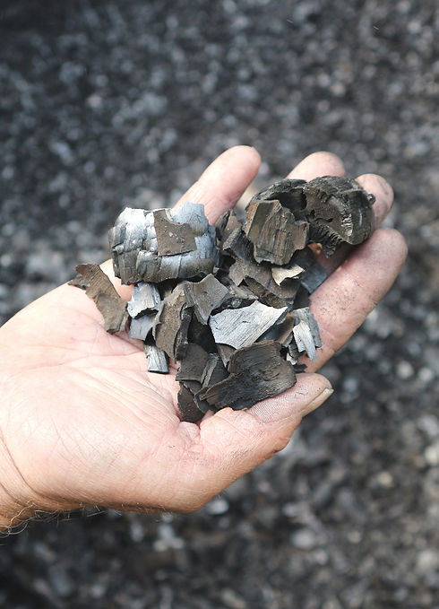 Charcoal shards used for sustainable charcoal powder