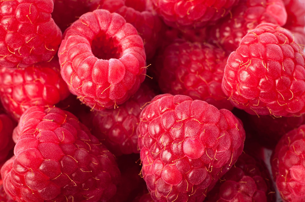 raspberry oil made from upcycled berries