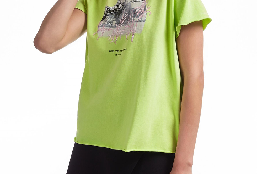 Blusa de Malha com Silk Localizado Monte Fuji - Animale