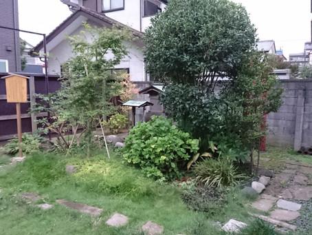 トロンのお庭2017秋