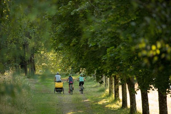 Location de vélos, vélos avec remorque pour transporter mon bébé ou mon chien, location de vélos éléctriques pour des balades en famille ou entre amis  à Tulle et Seilhac en Corrèze