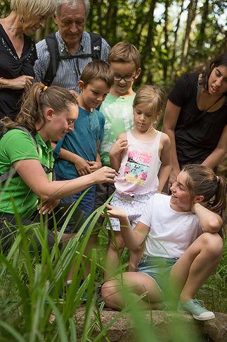groupe de randonneurs en pleine nature en Corrèze encadrée par un guide nature professionnel
