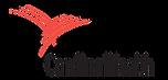 Cardinal_Health_Logo-700x336.png