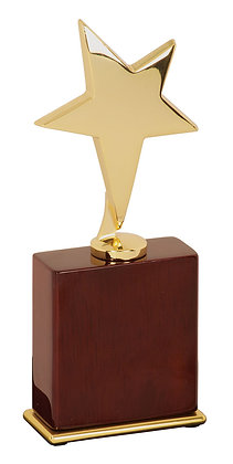 Star Award on Rosewood Piano Finish Base