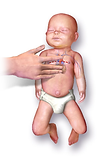 CPR_Infant.png