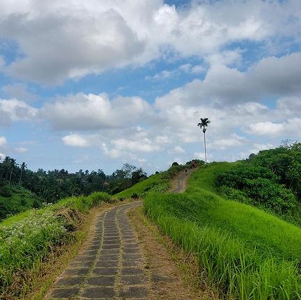 Bali Trail.jpg