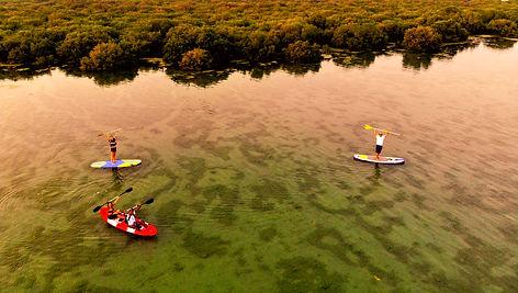 3 pers mangrove .jpg