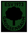 ESV Logo.png