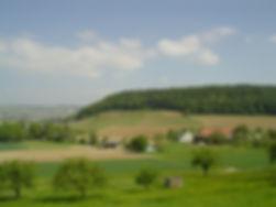 Z_3_ Blick auf Haslach.JPG