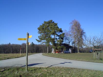 Armenfeld