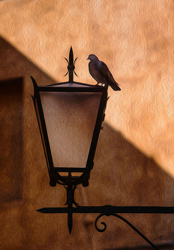 Bird on a Lamp