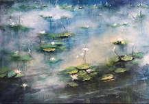 Misty Waters Series