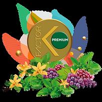 premium LOGOS2 PRODUCTOS ALEPH SUIR.png