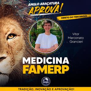 Vitor Marconato - FAMERP.png