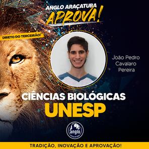 João Pedro Carvalho - UNESP.png