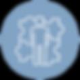 HYBRID-ADVISOR-ICON.png
