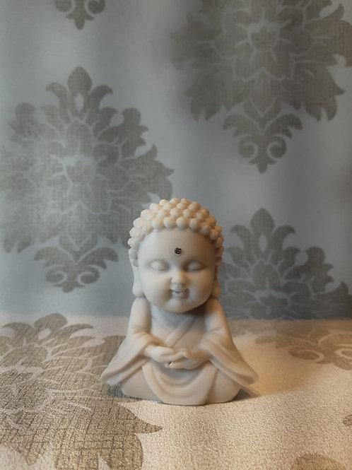Buda bebe sorte