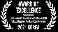 메디컬 일러스트 수상 2021