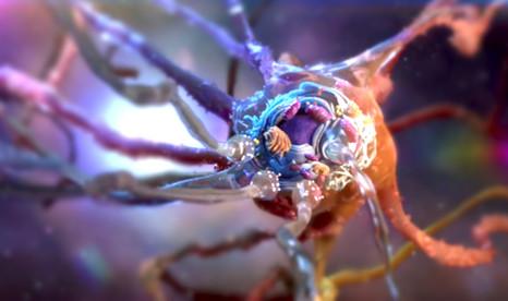 Medical illustration | Neuron cell