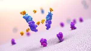 Novel protein delivery platform technology