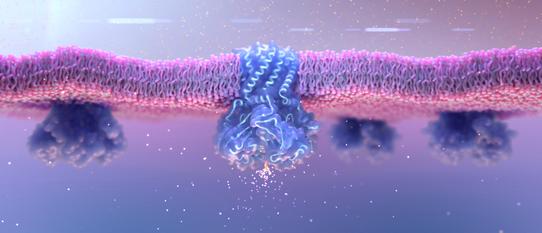 Medical animation still | ion channel