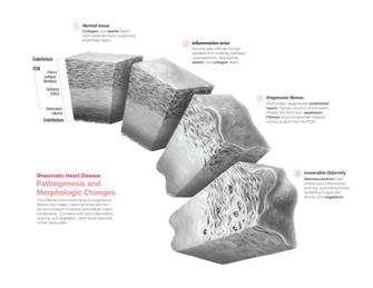 Pathology study with tissue cubes