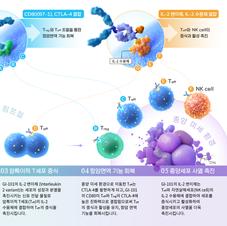 Medical illustration | Mechanism of Action of GI-101