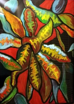 Croton #1