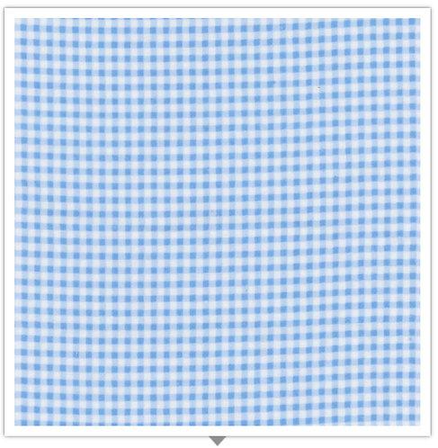 Gingham Flannel - Blue