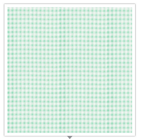 Gingham Flannel Mint