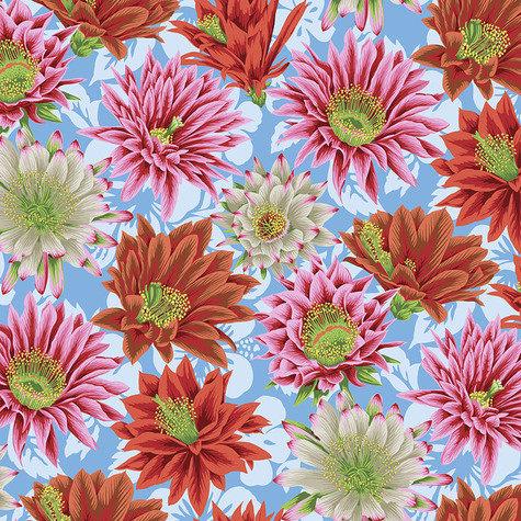Cactus Flower - Multi