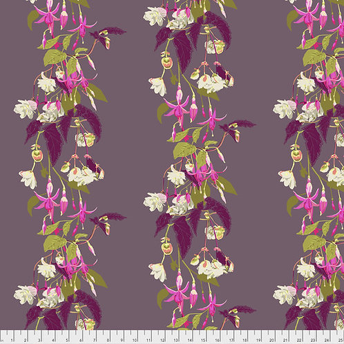 English Summer Fuchsia