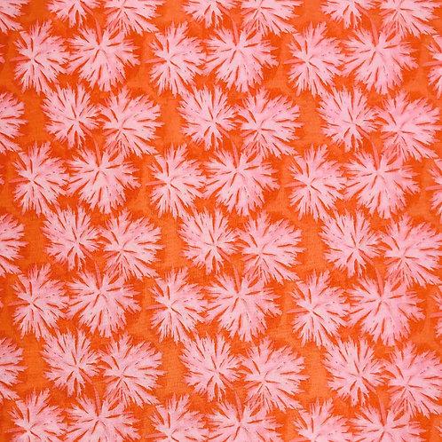 Geranium - Orange
