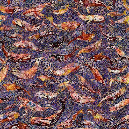 Aquatica Whales - Purple