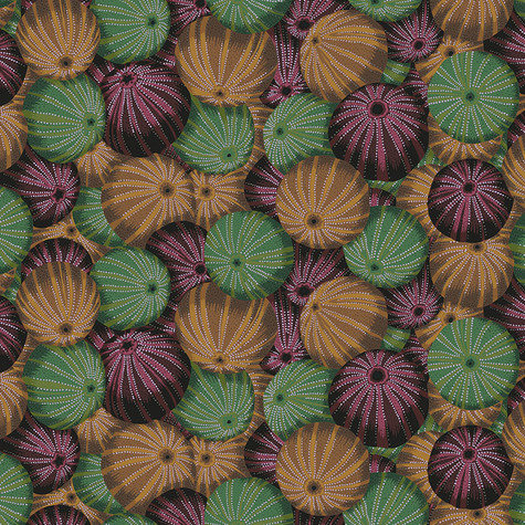 Sea Urchins - Antique