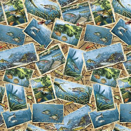 Keep It Reel Fish Postcards