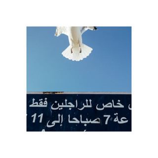 Maroc_carré-02.jpg