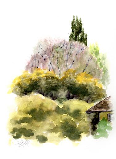 Lacy Tree
