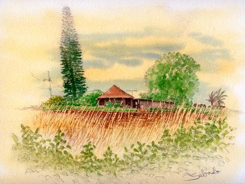 New Maunaloa