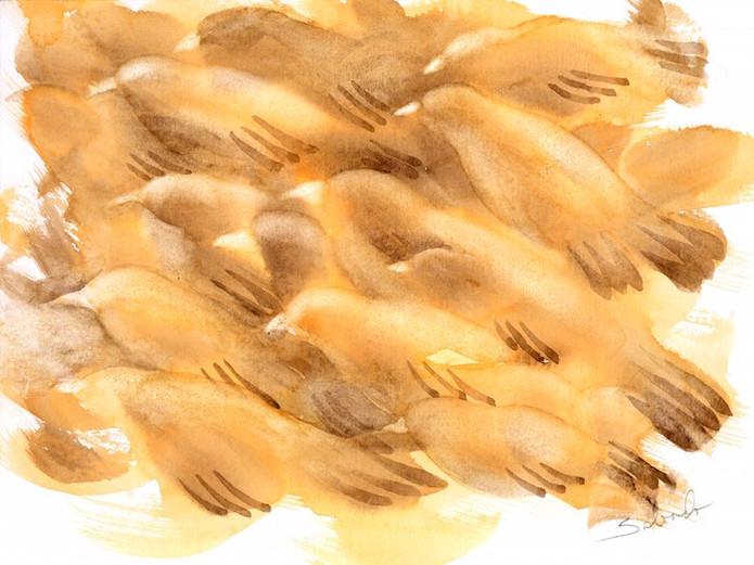 Birds 03.jpeg