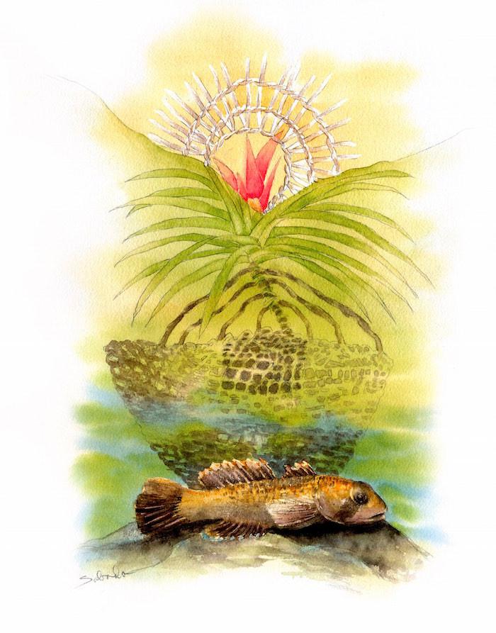 Leie Fish Basket.jpeg