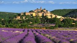 Lavender Village Provence