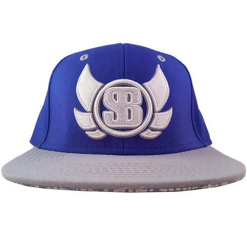 Royal Blue/Steel Snapback