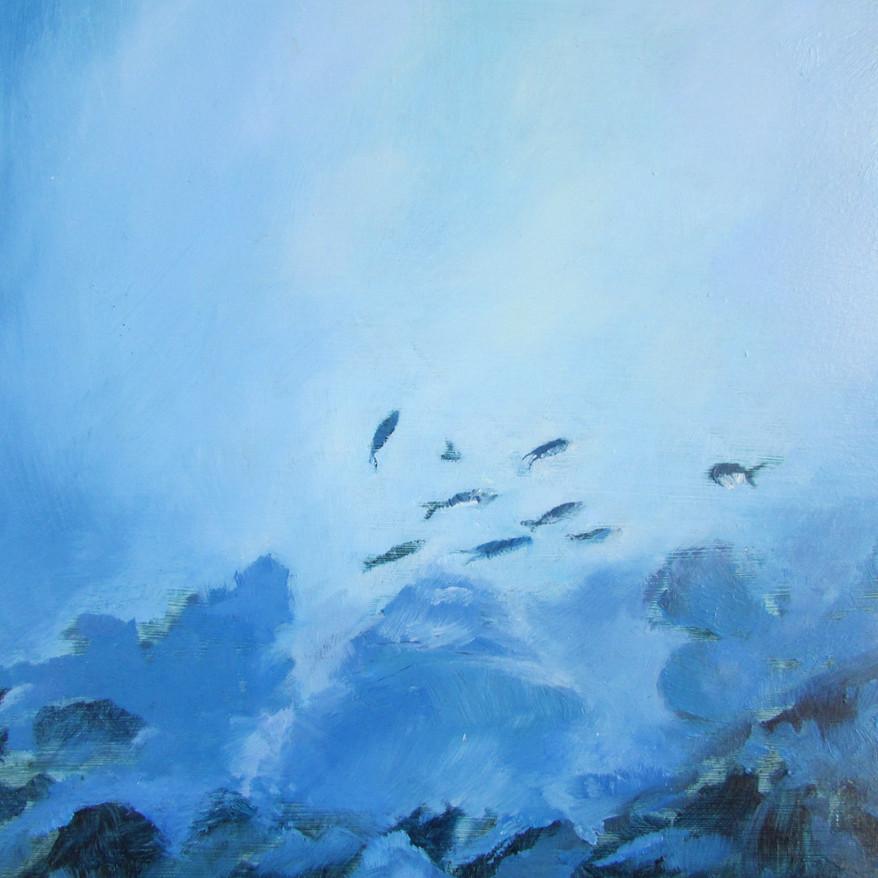 Palancar Reef