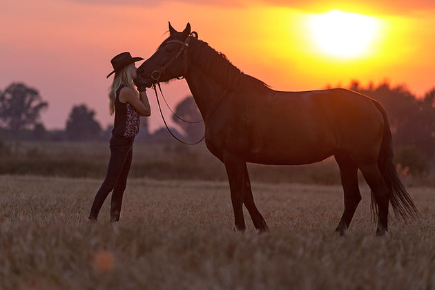 Silhouette of a cowgirl and horse..jpg