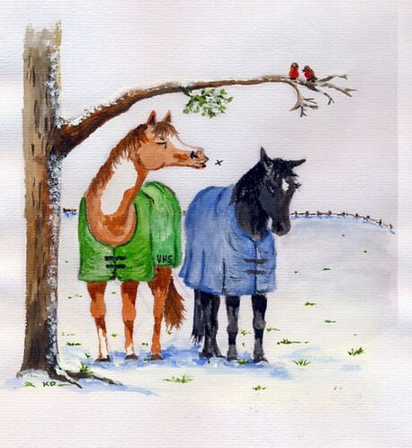 Christmas Charity Horse welfare Cards. Veteran Equine Trust - Pack of 10