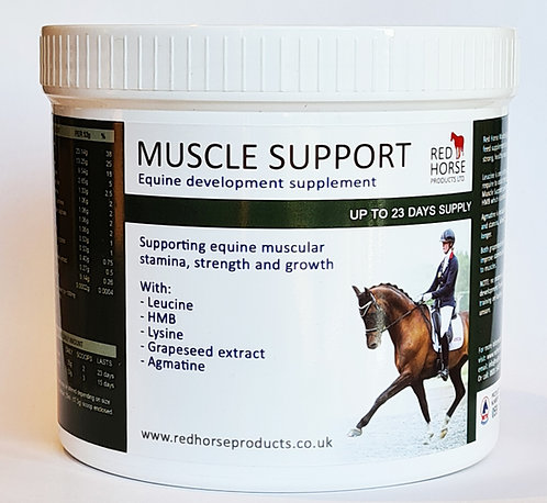 Muscle Support
