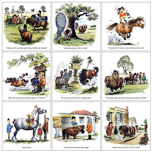 Pony Greeting Card Assorted Pack of 9 Fun Horse Cartoons by Thelwell
