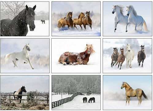 Equestrian Christmas Greeting Cards - Pack of 9